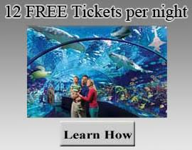 10 FREE Tickets per night
